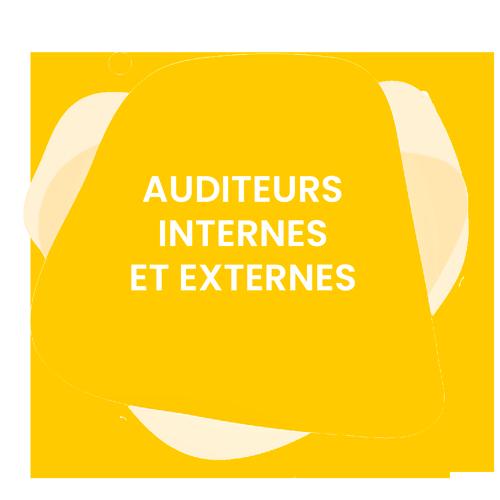 Auditeurs-internes-et-externes