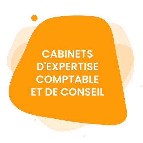 Cabinets d'expertise comptable et de conseil