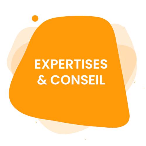 EXPERTISES & CONSEIL